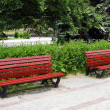 Benches in the park — Stock Photo