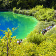 The plitvicka lake - Foto Stock
