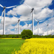 Stock Photo: Ecological wind