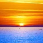 Sunset over sea — Stock Photo #6953294