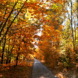 Autumn alley — Stock Photo #7090506