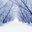 Foto Stock: Winter