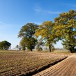 Autumn agricultural landscape — Stock Photo #7251199