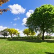 Green park — Stock Photo #7318092
