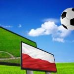 Euro 2012 — Stock Photo #7376197