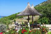 śródziemnomorski ogród — Zdjęcie stockowe