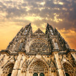 The Gothic cathedral in Prague - Stock Photo