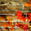 Stock Photo: Autumn leaves on the wall