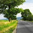 Country road — Stock Photo #7619444