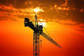 Crane at sunset — Stock Photo
