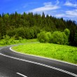 Mountain road — Stock Photo #7753519
