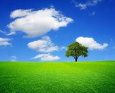 Grön horisont — Stockfoto