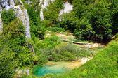 Plitvice lakes — Stock fotografie