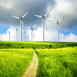 Wind Industry — Stock Photo #7918059