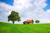 House and green field — Stock Photo