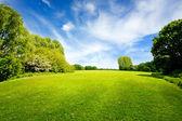 Campo verde y cielo nublado — Foto de Stock