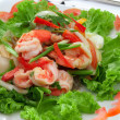 Saladsalad - 