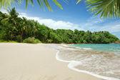 Panoramic view of nice paradise like empty tropical beach — Stock Photo