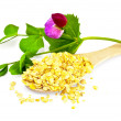 Pea flakes in a spoon with a flower - Stock Photo