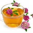 Herbal teas with clover in a glass cup — Stock Photo