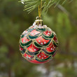 Christmas ball on a branch of pine — Stock Photo