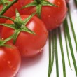 Fresh tomatoes and chive — Stock Photo