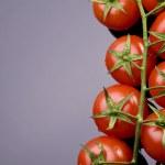 Fresh tomatoe — Stock Photo