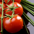 Fresh tomatoes and chive — Stock Photo #6874670