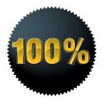 One hundred percent — Stock Vector #6898538