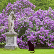A lady sculpture looking at cat - Stock Photo