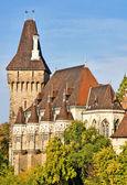Vajdahunyad castle Budapeşte. — Stok fotoğraf