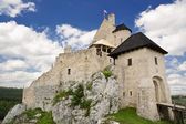 Gothic Polish castle. — Stock Photo