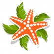 Starfish — Stock Vector