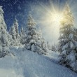 Winter landscape — Stock Photo #7227974