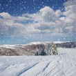 Winter landscape - 图库照片