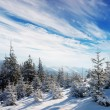 Winter landscape in mountains — Stock Photo