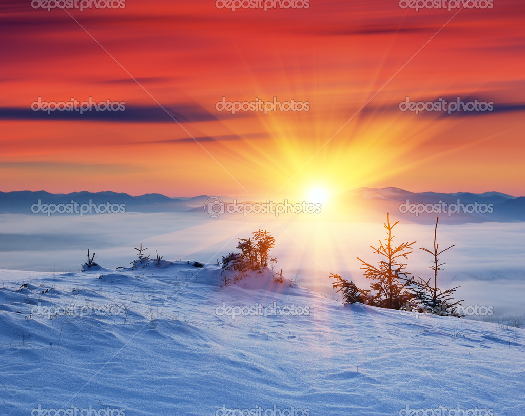 Winter landscape on a sunset. Mountains Carpathians, Ukraine   Stock Photo #7542677