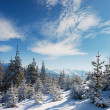 Winter landscape - Stock Photo