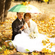 Couple sitting at the park with umbrella — Stock Photo #7317068
