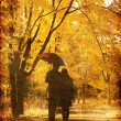 Couple walking at alley in autumn park. — Stock Photo