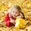 Child in autumn park. — Stock Photo #7413201