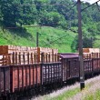 Train cars are loaded by boards — Stock Photo