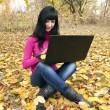 Beautiful woman with the laptop — Stok fotoğraf