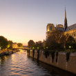 Notre dame de Paris - France — Stock Photo #7280058