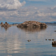 Mono Lake — Stock Photo #6791292
