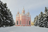 Chesmensky church in St.-Petersburg. — Stock Photo