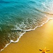 Starfish on sand and wave — Stock Photo