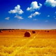 Stock Photo: Haystack on meadow in summer