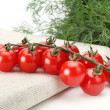 Fresh cherry tomato — Stock Photo