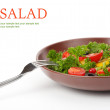Fresh salad — Stock Photo #7591358